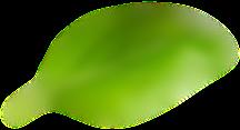 Elemento flutuante 5