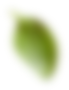 Elemento flutuante 2