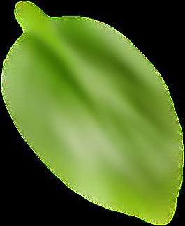 Elemento flutuante 3